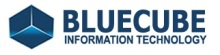 Bluecube Information Technology
