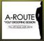 A-Route You Grooming Session