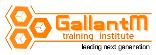 GallantM Training Institute