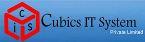 Cubics IT System pvt. ltd.