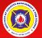 INSTITUTE OF DISASTER MANAGEMENT & FIRE SCIENCE