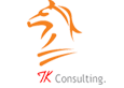 TechKnights consulting