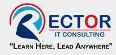 RECTOR IT CONSULTING