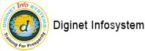 Diginet Info Systems