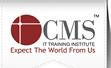 CMS IT Training Institute - Baroda