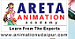 Areta Animation Academy