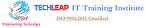 TechLeap IT Training Institute