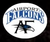 Airport Falcons Aviation Training Academy