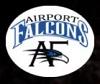 Airport Falcons Aviation Training Academy