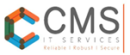 CMS IT Training Institute -Pimpri