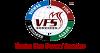 VFS Consultancy Service